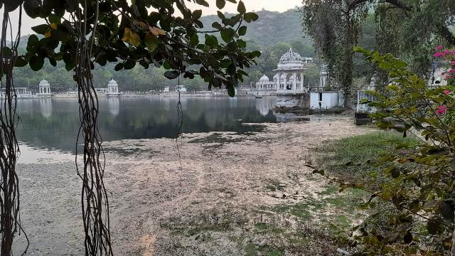 Algal bloom in a lake in Udaipur (Image Source: Rituja Mitra)