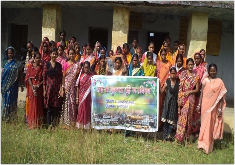 A lac Cooperative in Jharkhand helps locals make lac farming a profitable livelihood