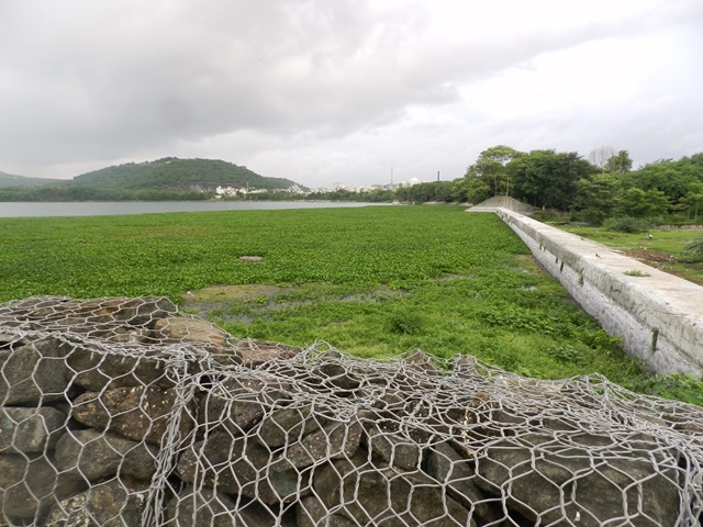 Rock wall constructed near the lake. (Image source: Dharmaraj Patil)