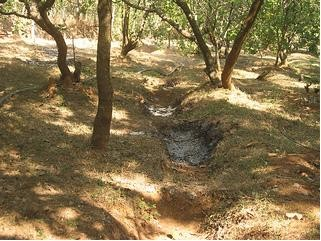 Trenches dug at AR farms, Kundapur, Mangalore