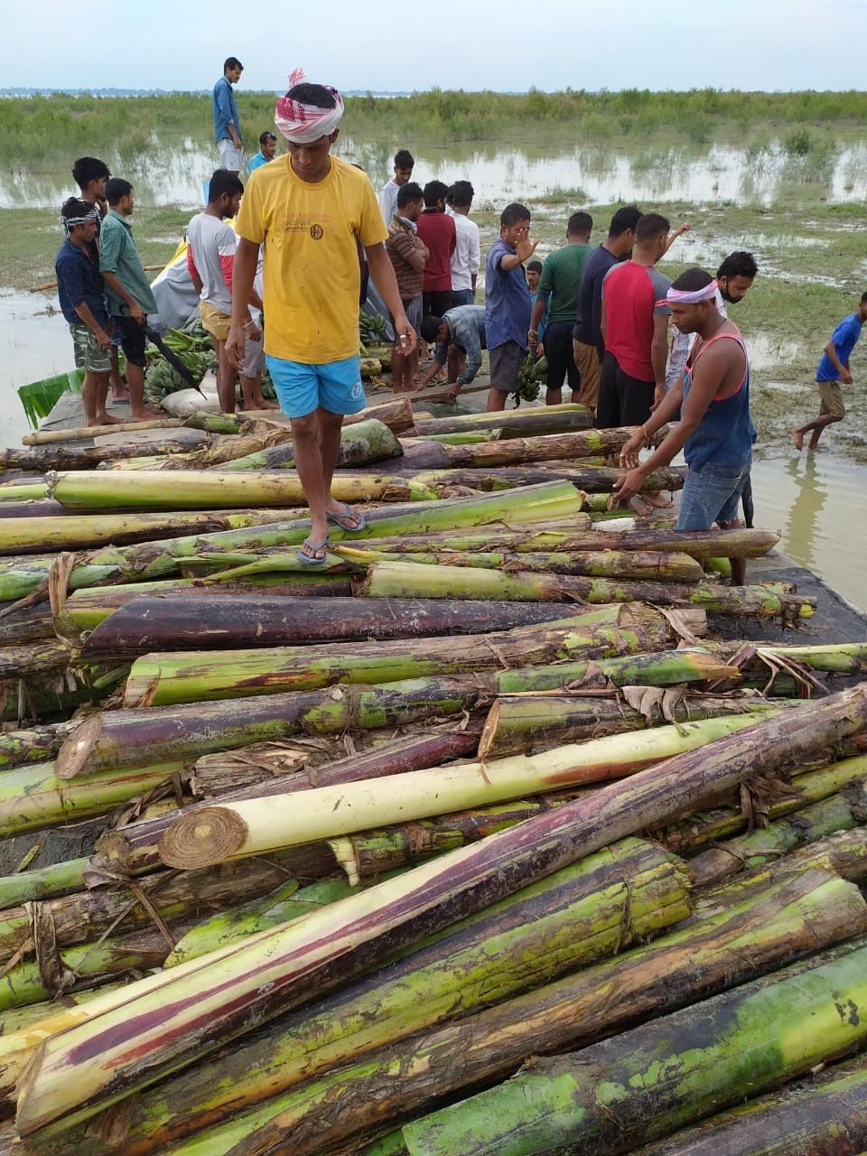 People in one of the villages worst-hit by floods and riverbank erosion providing food for the elephants (Image: Pulin Hazarika)