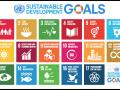 Sustainable Development Goals adopted in 2015 as a part of the 2030 agenda. (Source: Wikipedia Commons)