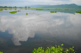 Deepor Beel is a freshwater lake in Assam (Source: IWP Flickr links)