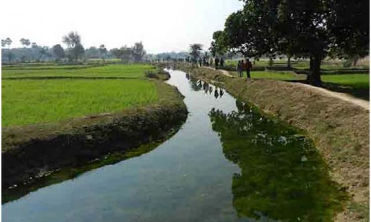 Ahar Pyne system in Gaya, South Bihar  (Image courtesy: Hindi Water Portal)