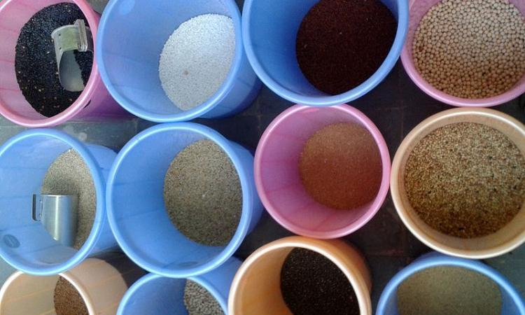 Cereals and millets at a bazaar in Nizampet, Hyderabad (Image Source: Aditya Madhav, CC BY-SA 3.0, Wikimedia Commons)
