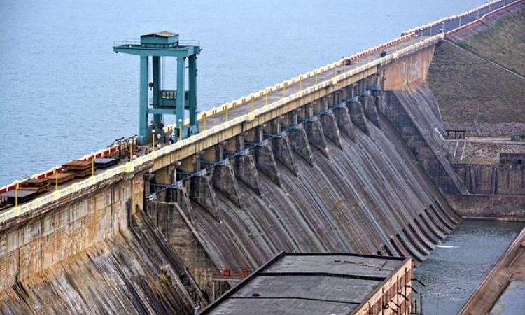 Dams can threaten biodiversity (Image Source: India Water Portal)