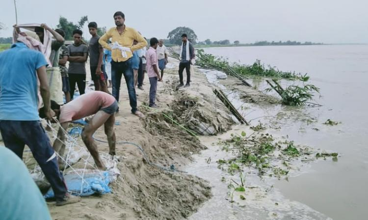 Erosion due to floods in Ganga river (Source: Umesh Kumar Ray)