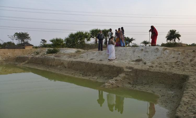 Celebrating the pond at Gobaria